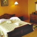 Hotel Ambassador Baia Mare small