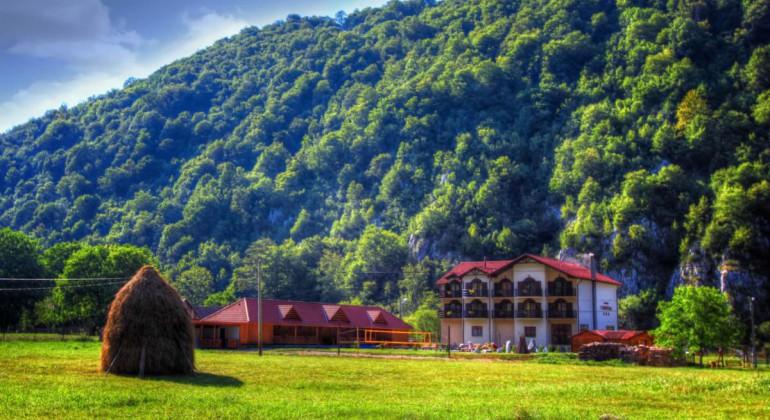 Pensiunea Carpathia Remeti
