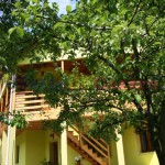 Vila  Casa Imre Bacsi Bran small