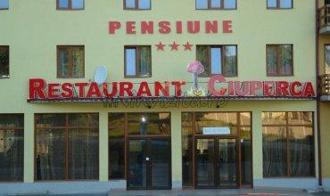 Pensiunea Ciuperca Hunedoara