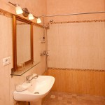 Pensiunea Dinu Residence Timisoara small