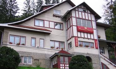 Vila  Gabriel Sinaia