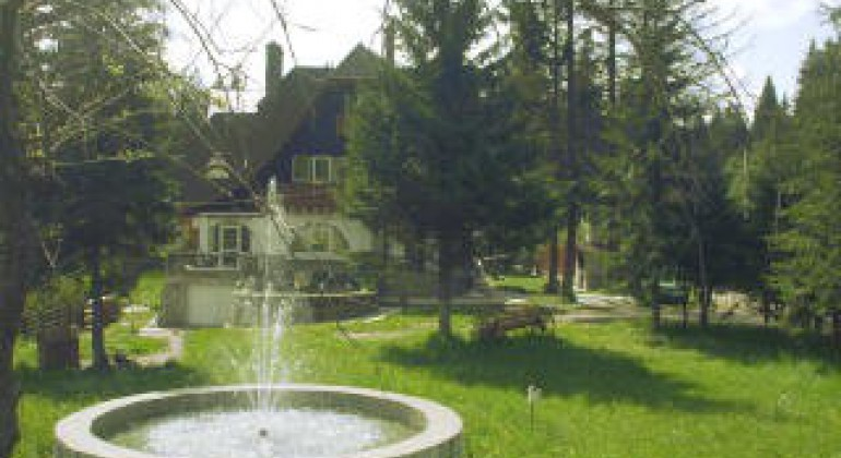 Vila  General Mincu Timisu de Sus