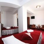 Hotel Golden Rose Constanta small