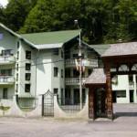 Hotel Lostrita Baia Mare small