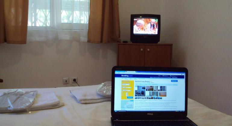 Apartament Regim Hotelier Luxor Busteni
