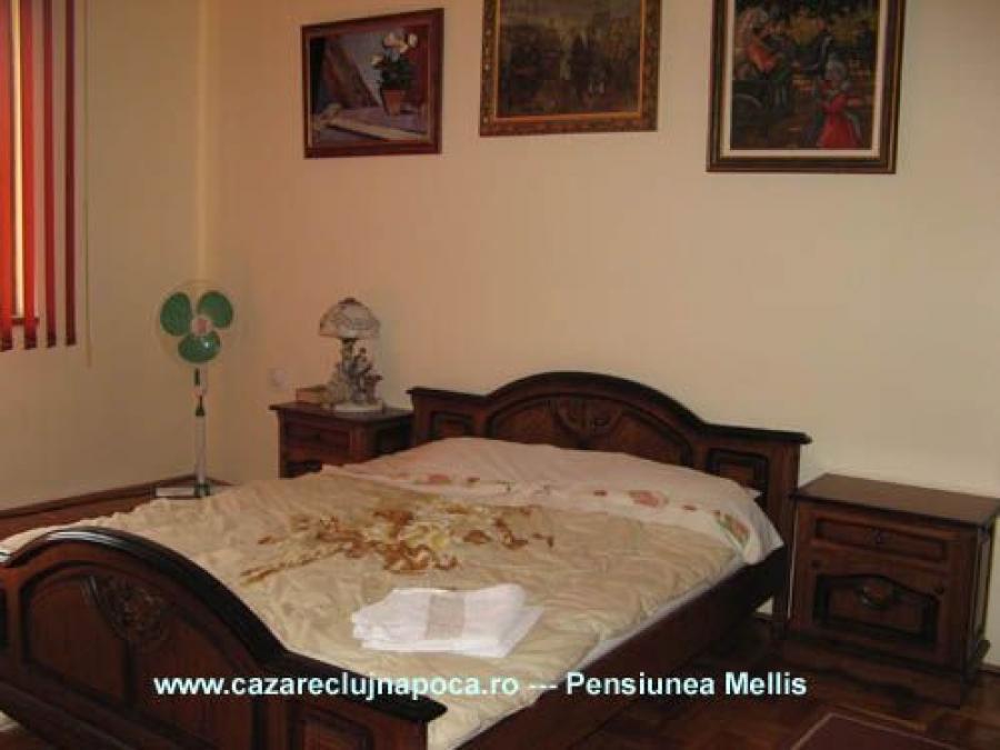 Pensiunea Mellis Cluj-Napoca