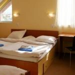Hotel Pamira Sibiu small
