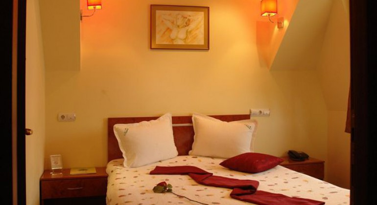Hotel Pensiune Natural Brasov
