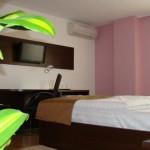 Hotel Ramina Timisoara small