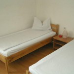Motel Rodna Borsa small