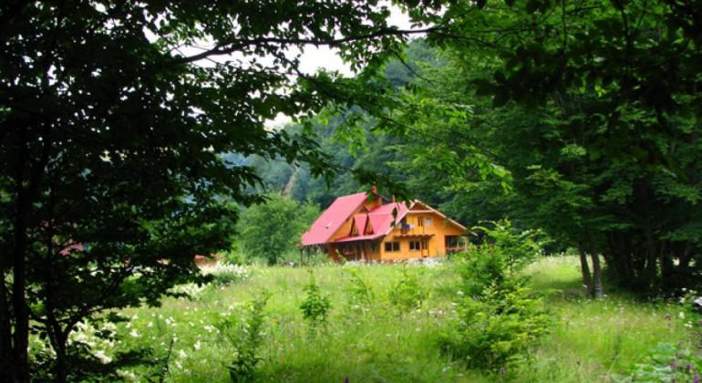 Pensiunea Rustic House Lesu